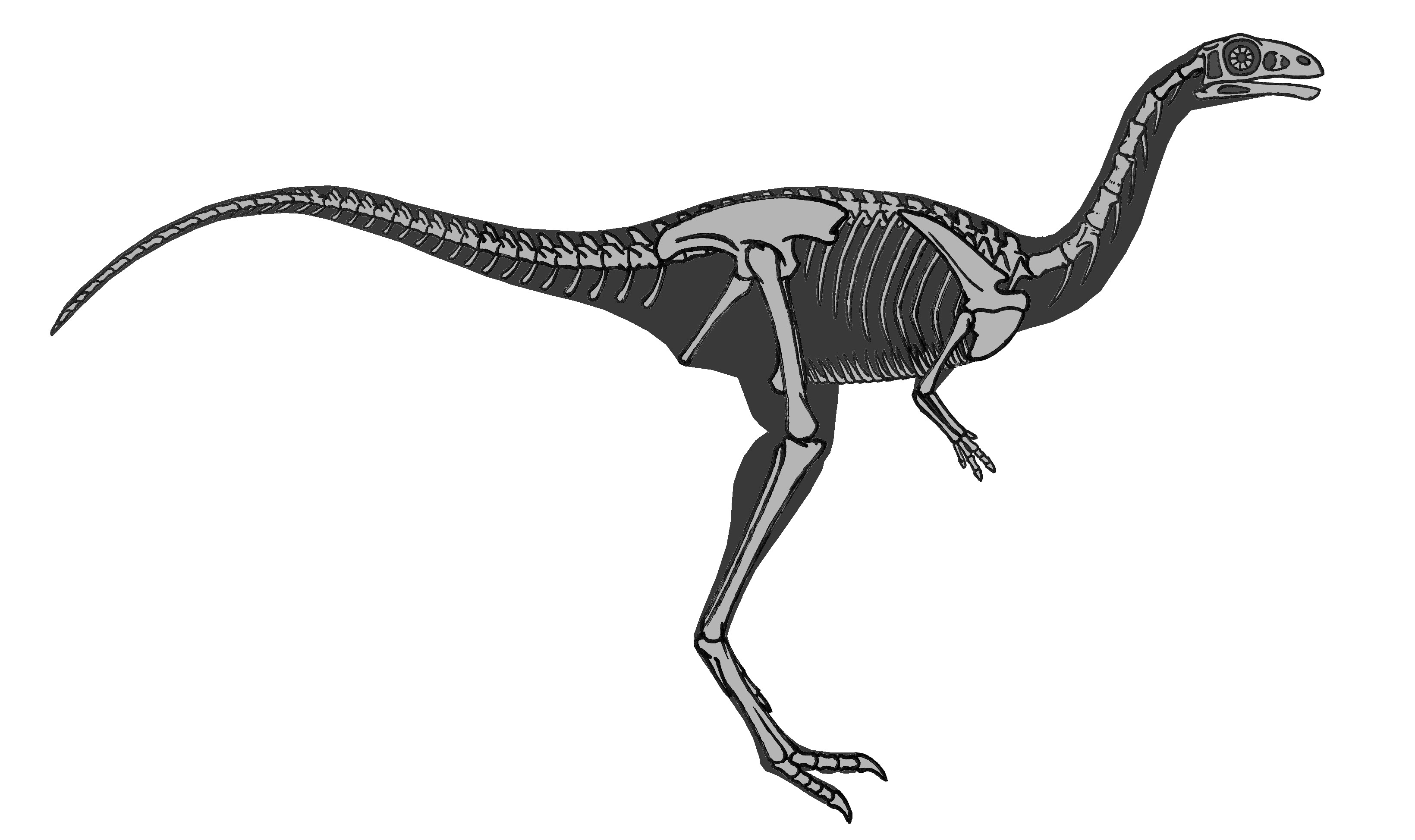 Некоторые виды динозавров имели «молочные зубы»— Ученые