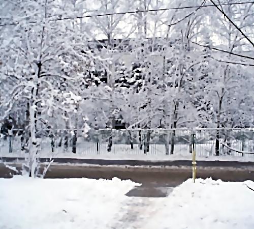 Вцентре Ростова около школы найден труп мужчины