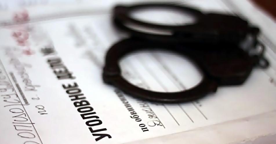 2-х граждан Новосибирска обвинили вубийстве 19-летней студентки