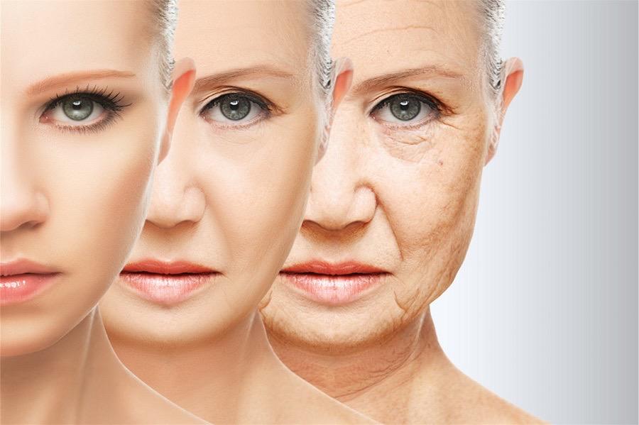 Определены три этапа старения человека