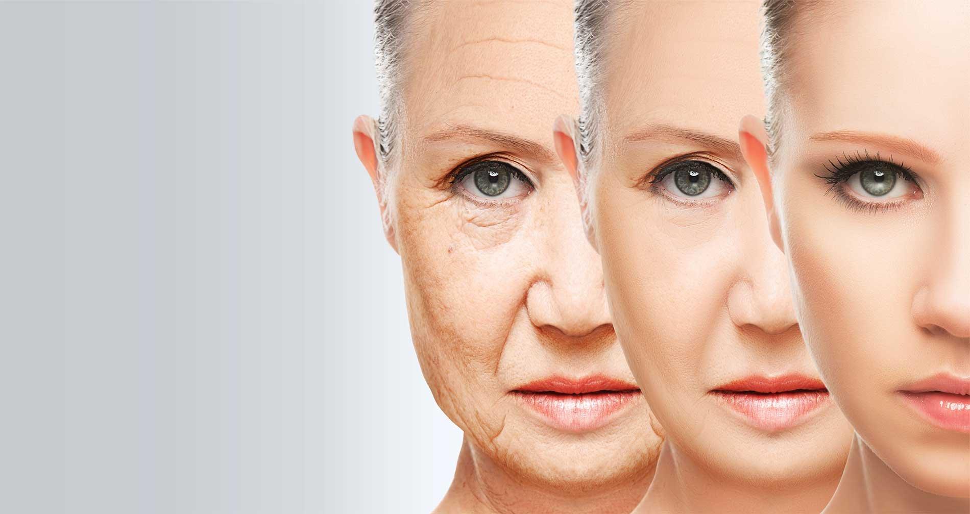 Ученые хотят остановить старение организма спомощью плазмы крови