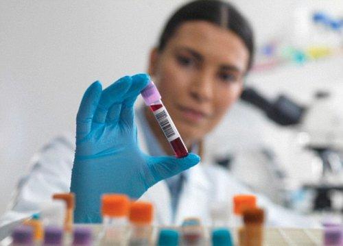 Медики научились диагностировать болезни по анализу крови