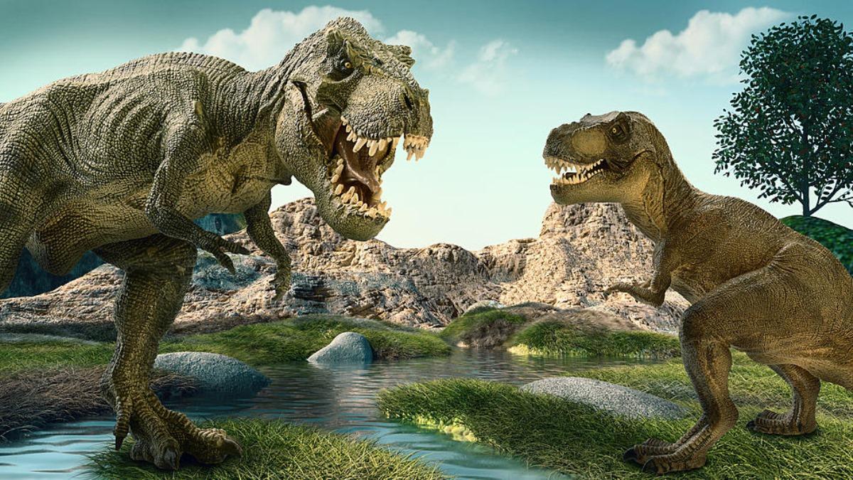 бриддеров многих динозавров рекс картинки ими осуществлялось общего