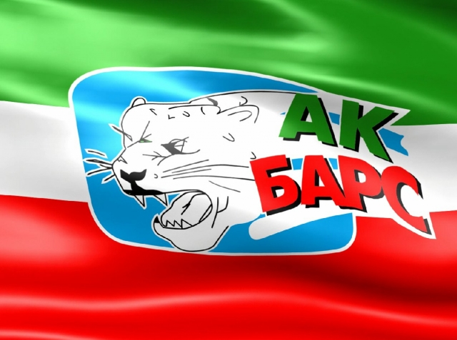 29 декабря в Казани Ак Барс сыграет с хабаровским Амуром