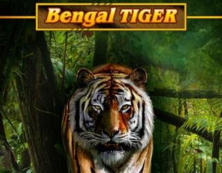 Bengal tiger игровой автомат игровые автоматы полумесяцы